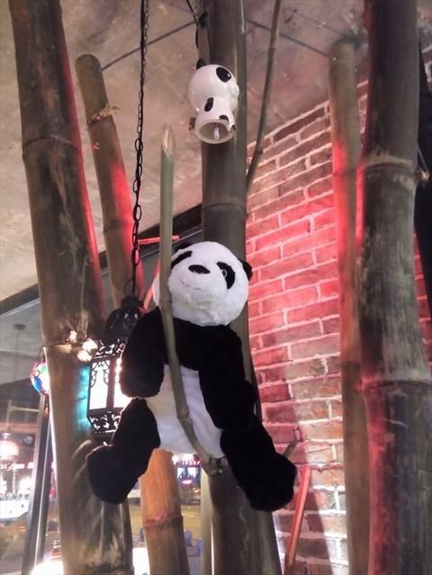超萌可爱熊猫攀爬简笔画