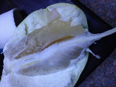 柚子- 勾庄海鲜蔬菜水果评价